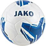Мяч тренировочный Striker 2.0