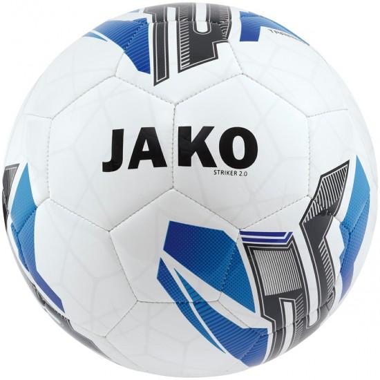 Мяч тренировочный Striker 2.0 MS